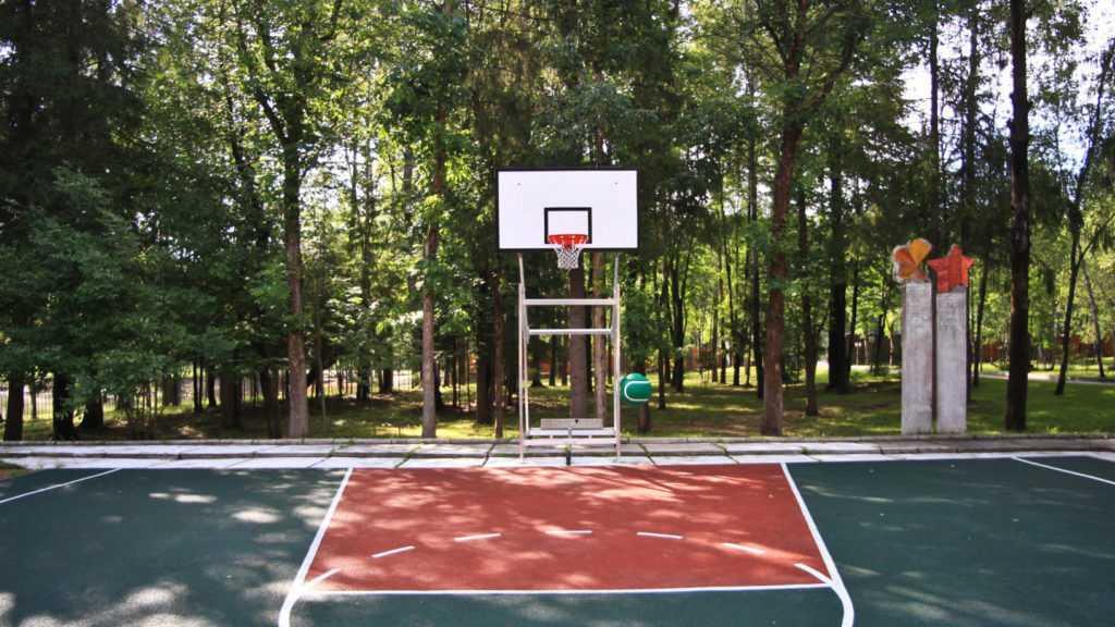 Волейбол, баскетбол, футбол в Парк-отель «Солнечный»